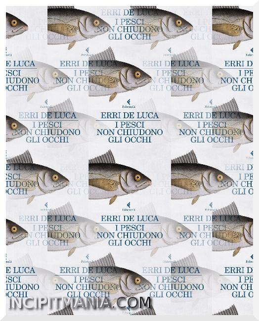 Copertina di I pesci non chiudono gli occhi di Erri De Luca