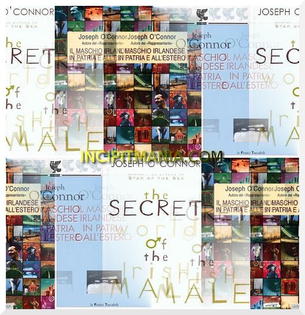 Copertine di Il maschio irlandese in patria e all estero di Joseph O Connor