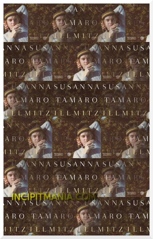 Copertina di Illmitz di Susanna Tamaro