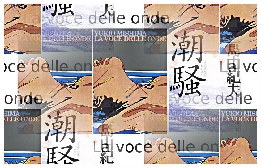 La voce delle onde - Yukio Mishima