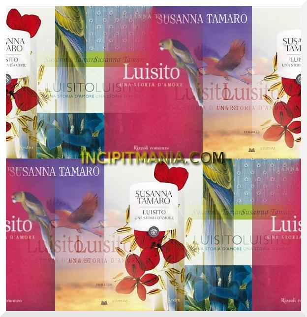 Copertine di Luisito di Susanna Tamaro