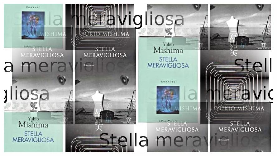 Stella meravigliosa di Yukio Mishima